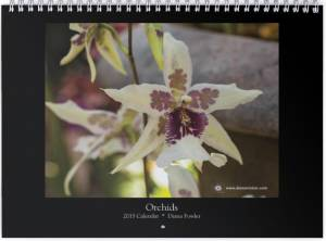 "<a href=""http://dianavision.com/?product=2015-calendar-orchids""><b>Orchids 2015</b></a>"