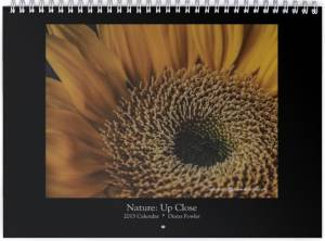"<a href=""http://dianavision.com/?product=2015-calendar-nature-close-up""><b>Nature: Up Close 2015 </b></a>"